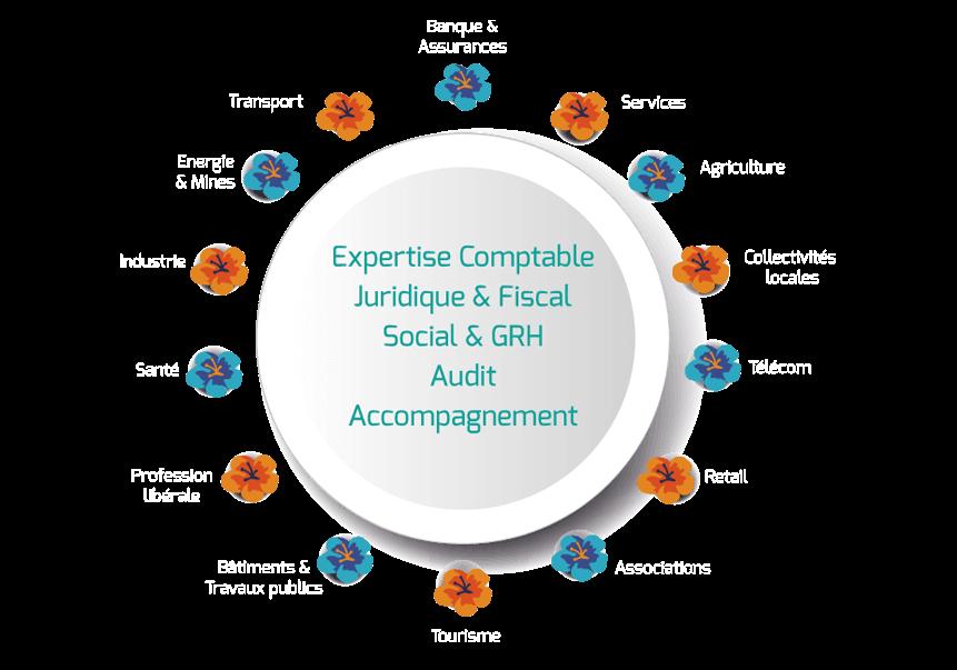Expert-comptable, Juridique et Fiscal, Social et GRH, Audit, Accompagnement